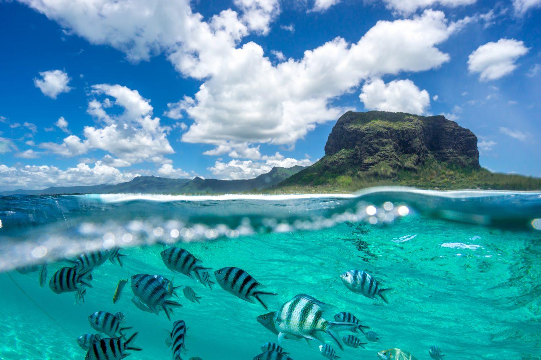 Amazing Mauritius