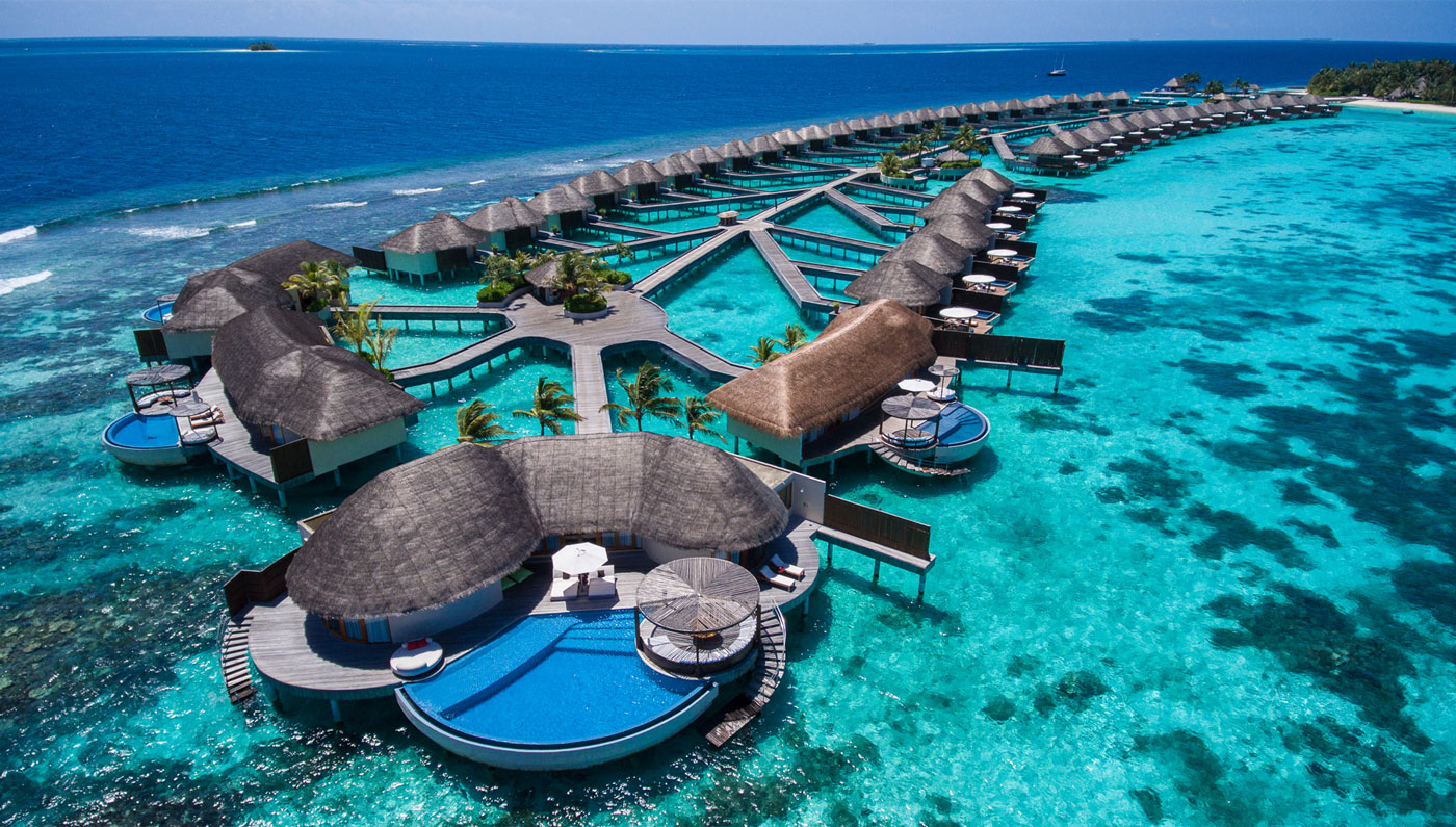 Maldives Delight