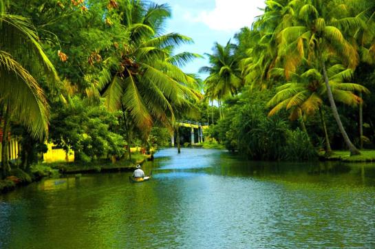 Tour in Kerala