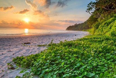 Delight Andaman