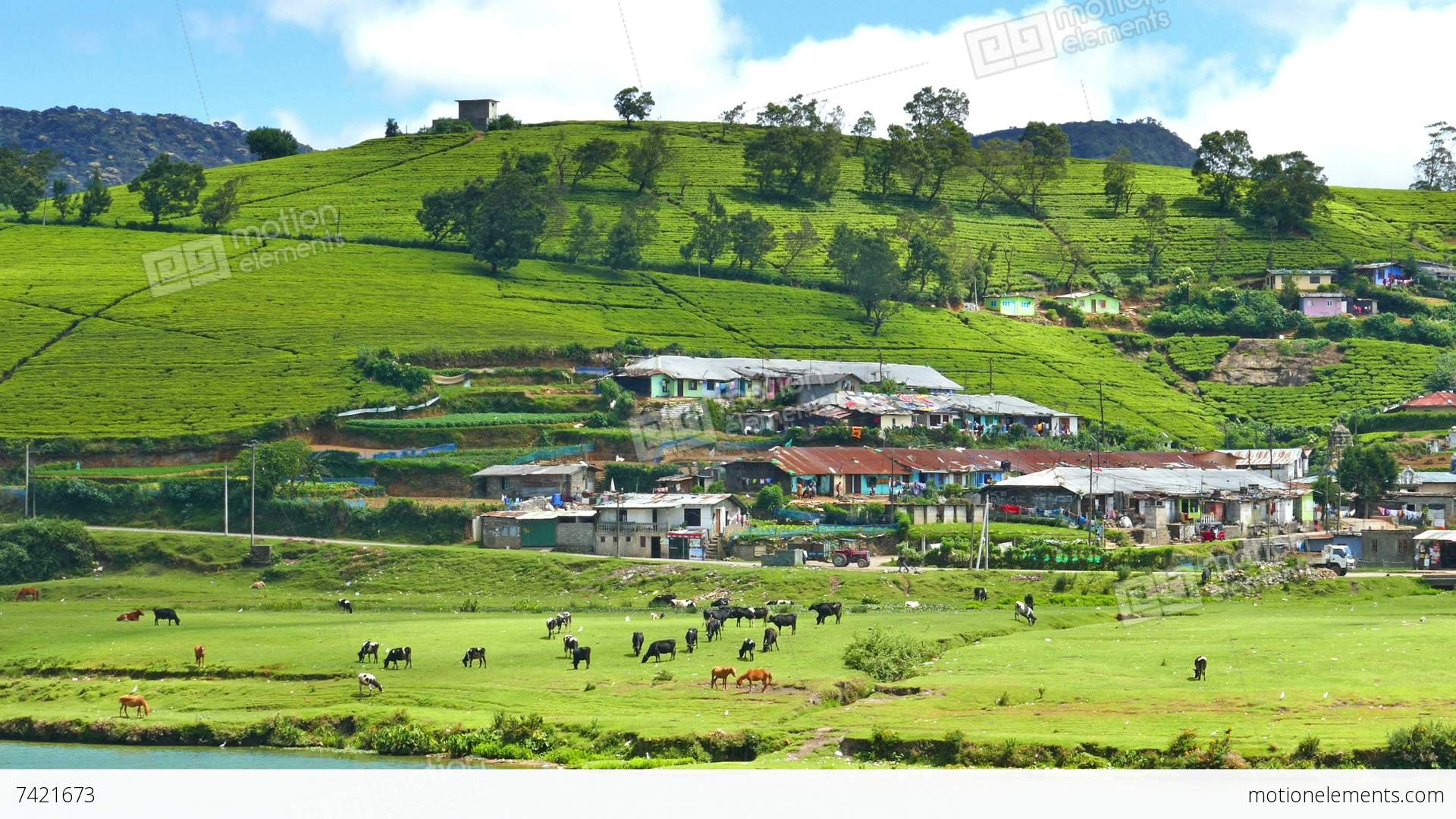 Scenic Beauty of Sri Lanka