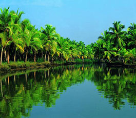 Kerala - Fly and Stay