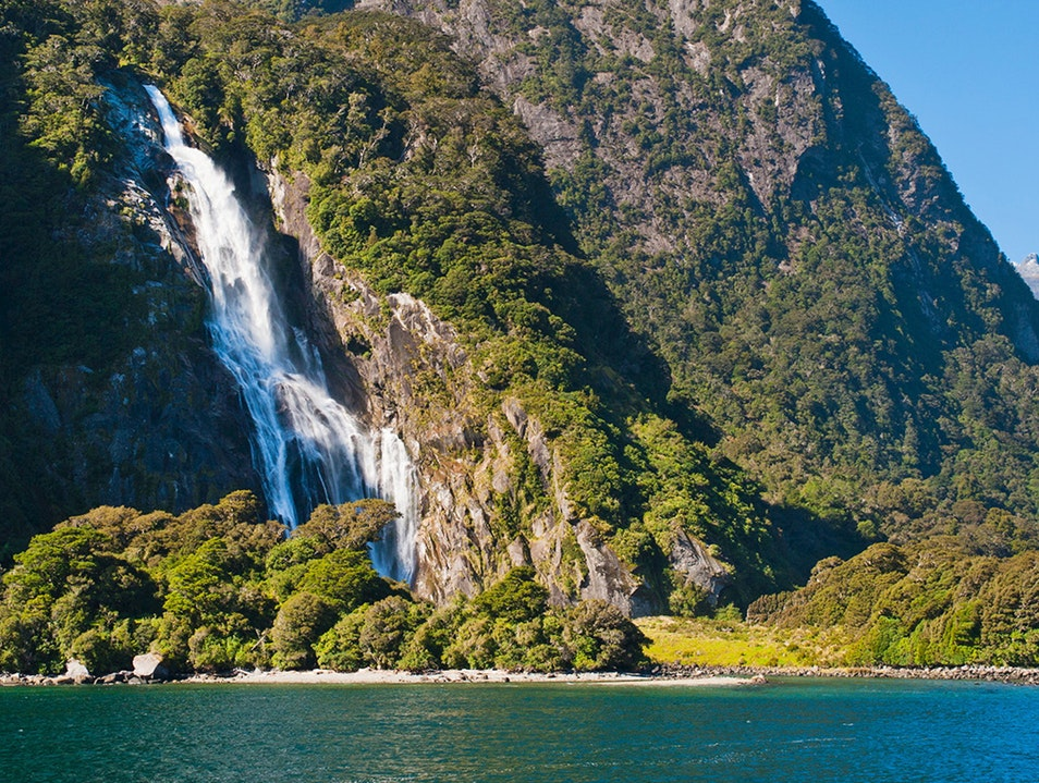 ROMANCE AT NEW ZEALAND