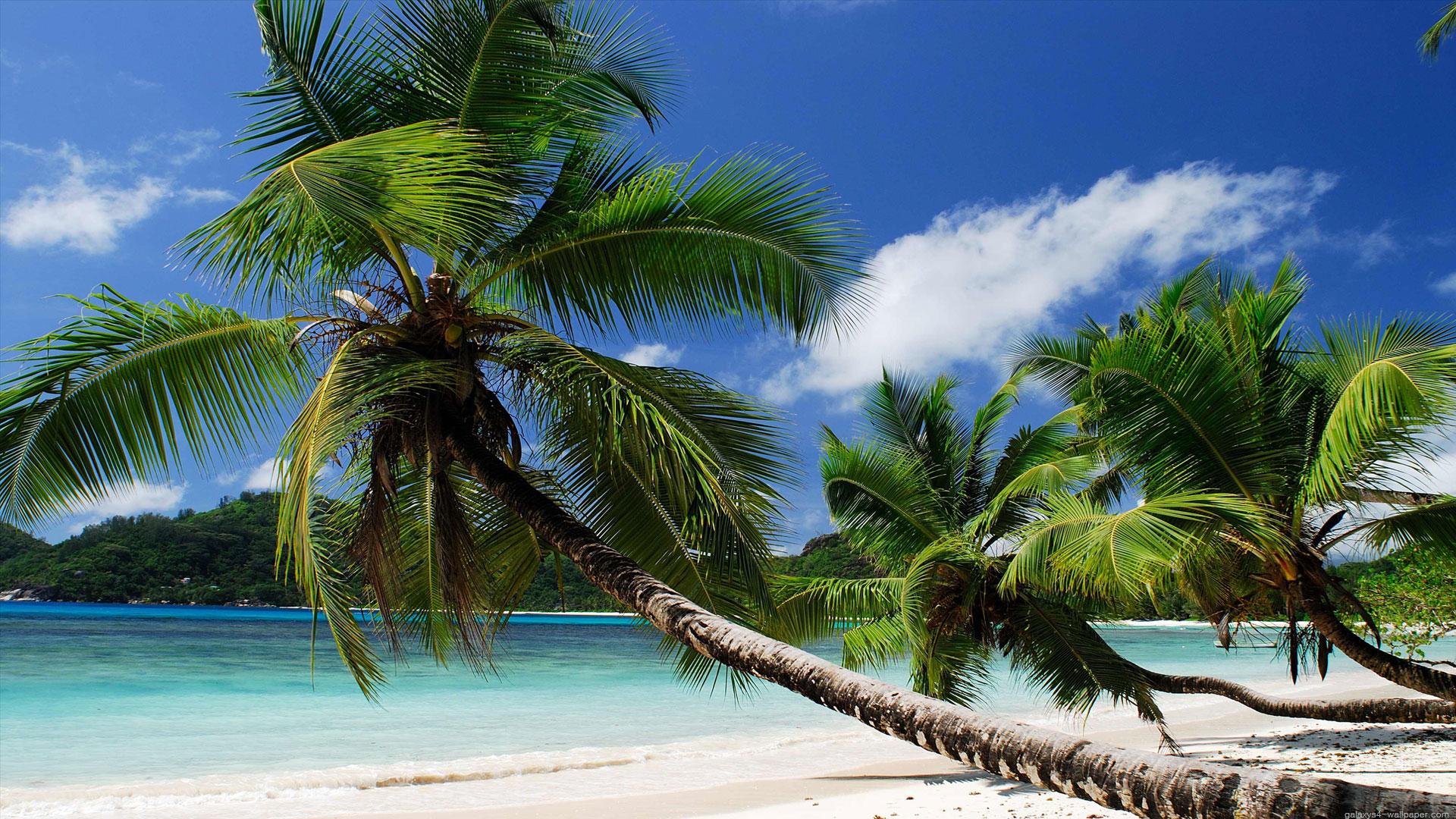 Enchanting Seychelles