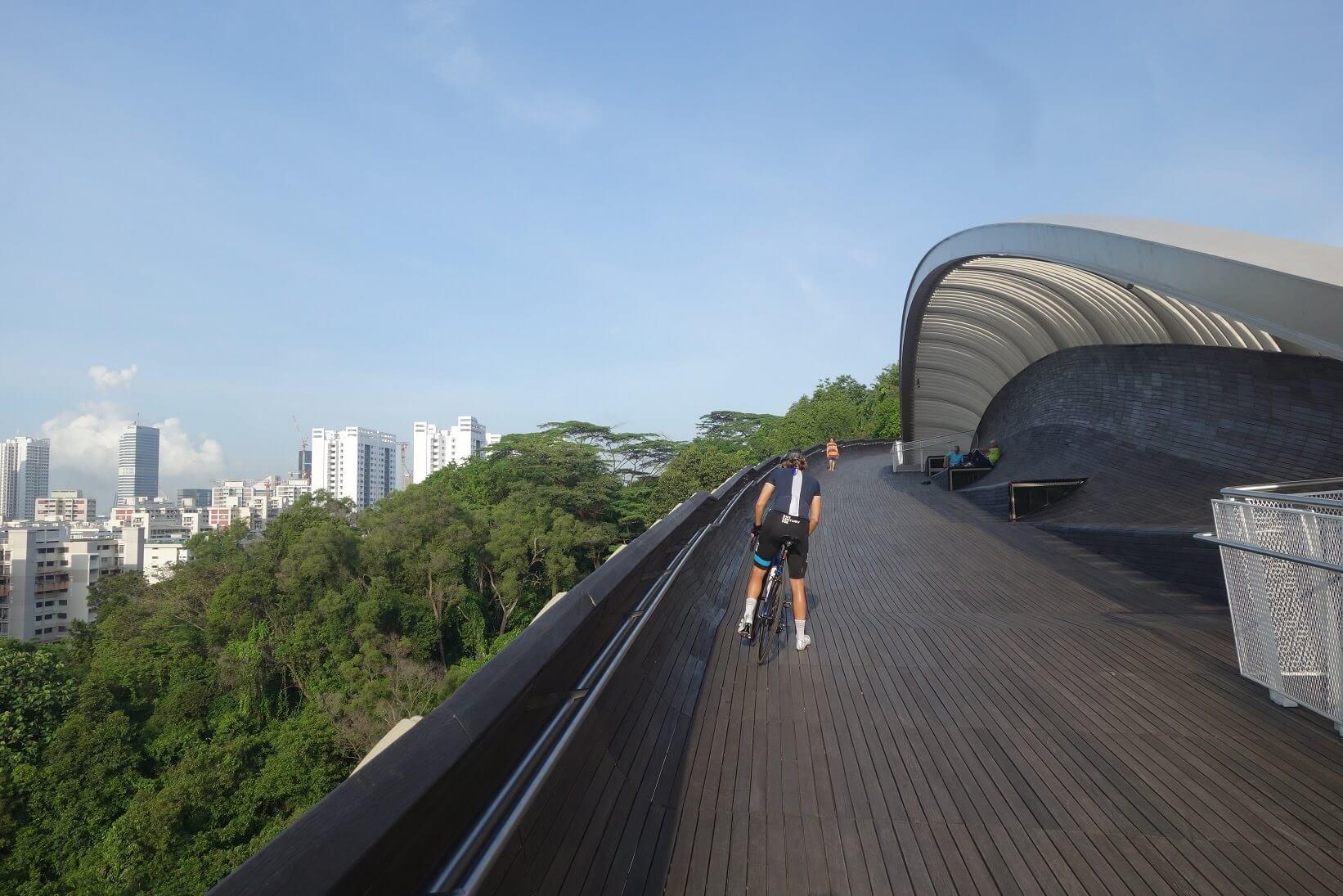 Delightful Singapore