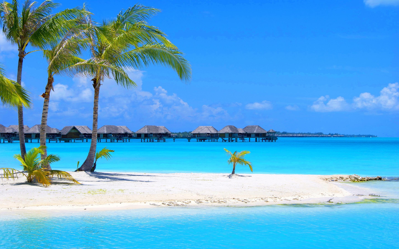 Blissful Goa
