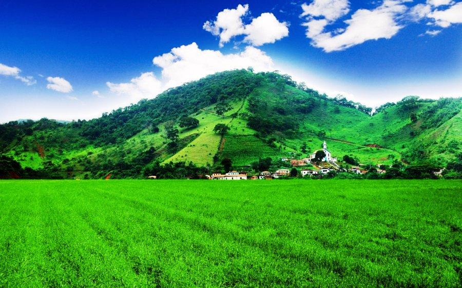 Wonderful Assam