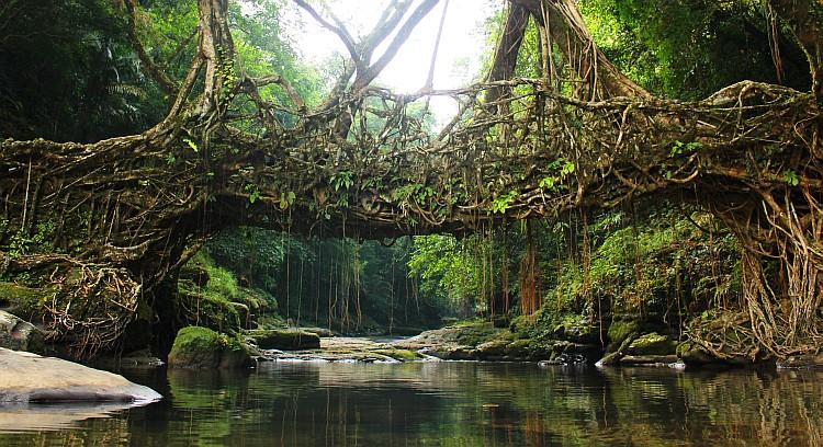 Unexplored Assam