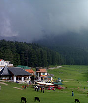 Beauty of Western Himachal