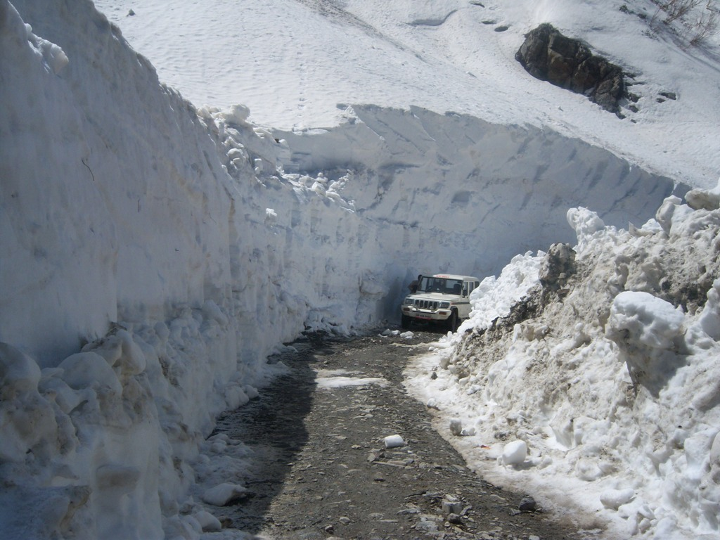 Shimla with Manali