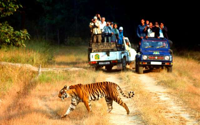 CORBETT NIGHTS PACKAGE