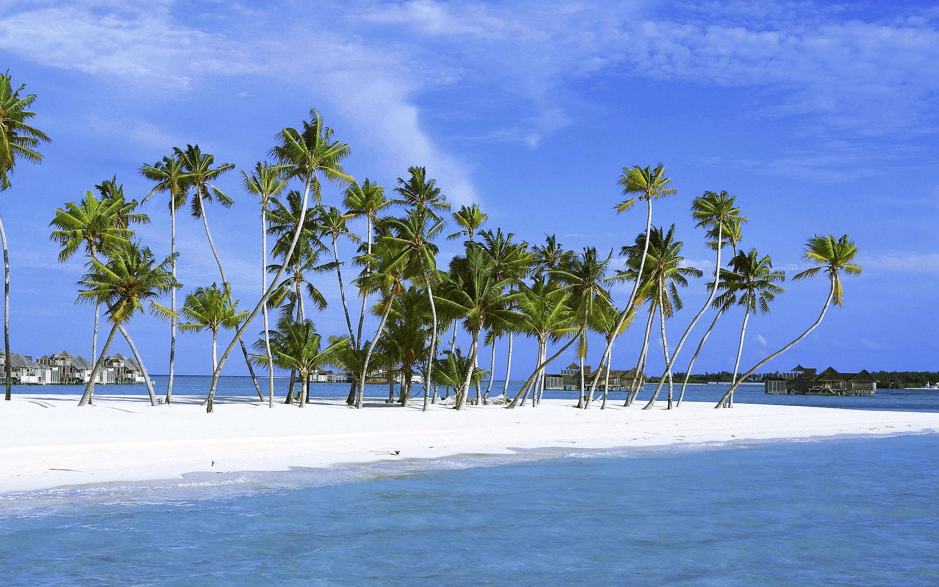 Ultimate Velassaru Maldives