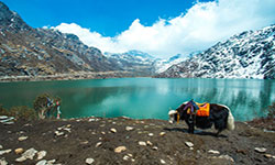 Darjeeling with Gangtok - Fly and Stay
