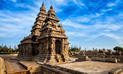 Tamil Nadu Holiday