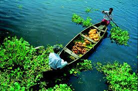 Kerala Munnar Alleppey Kovalam