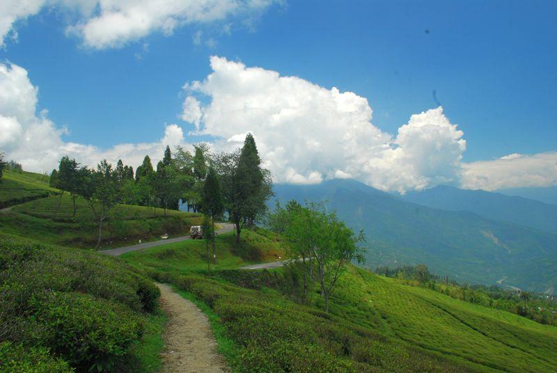 North East  Gangtok Kalimpong And Darjeeling