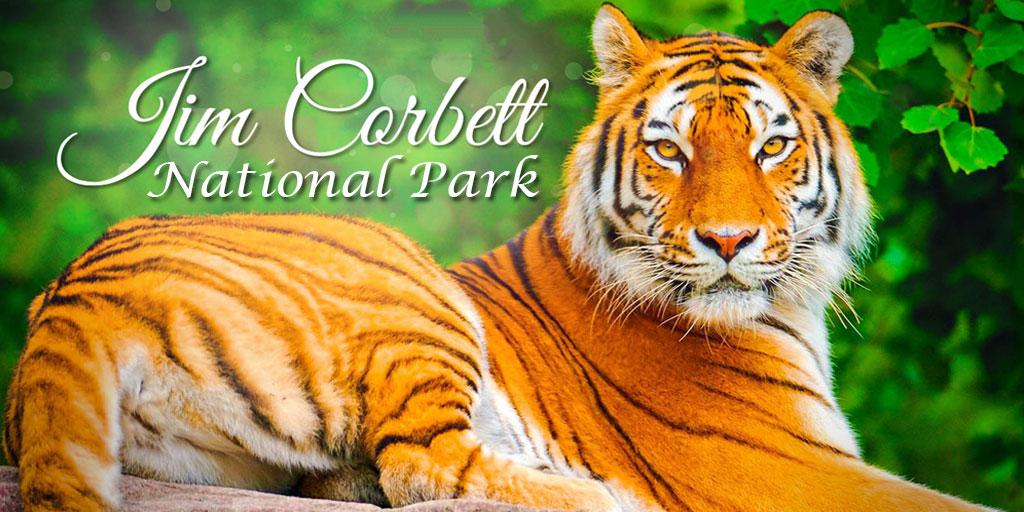 CORBETT TOUR PACKAGE