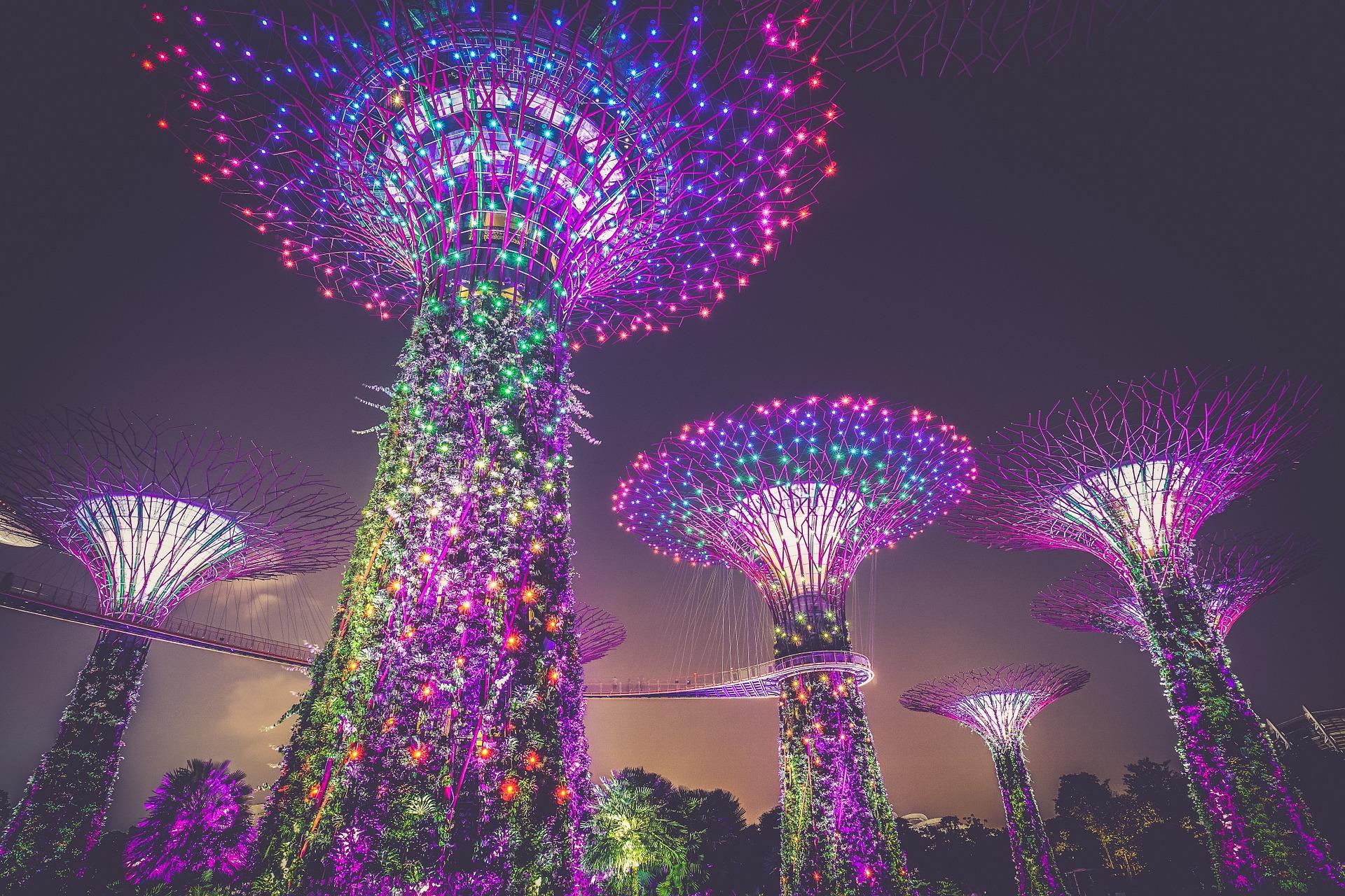 SINGAPORE DELIGHTS