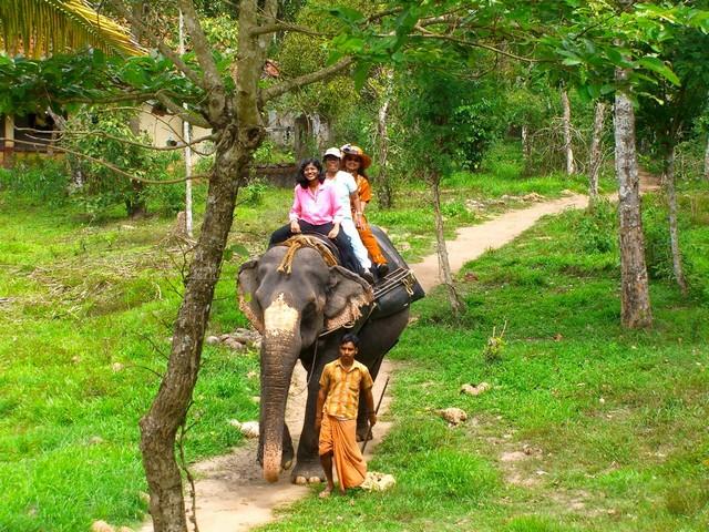 Kerala Munnar Thekkady and Alleppey