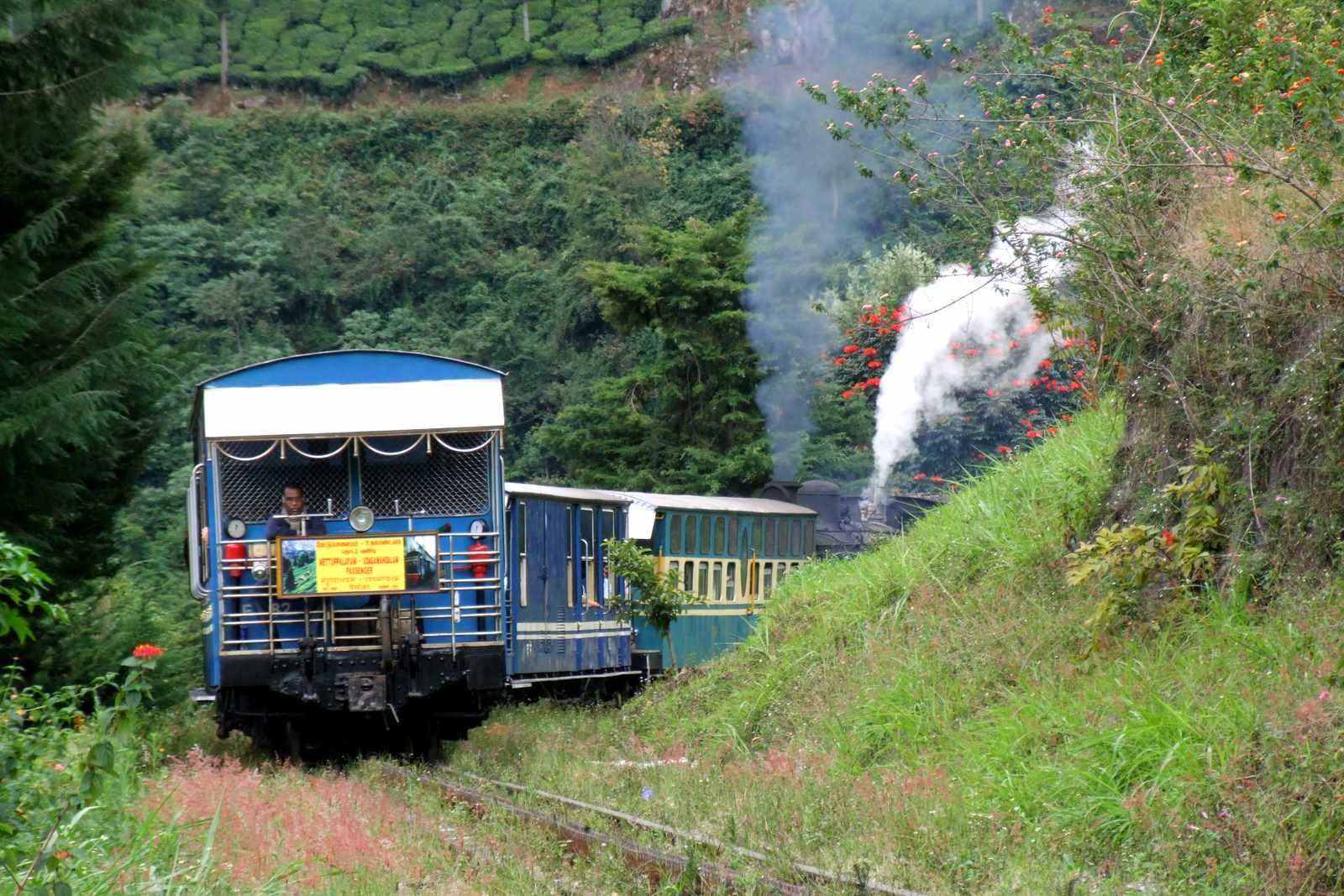 North East  Gangtok And Darjeeling