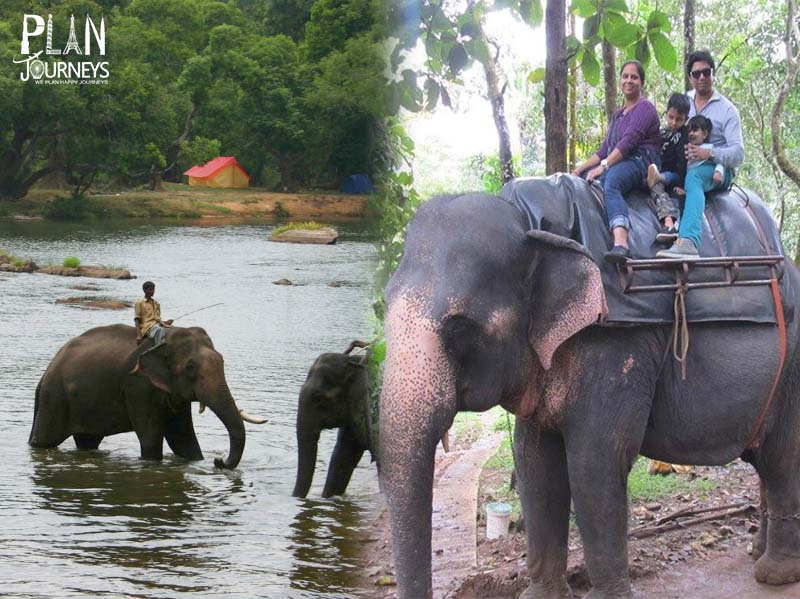 Ooty and Coorg Tour package