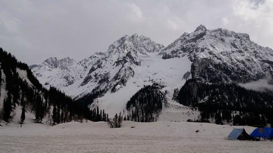Amazing Kashmir