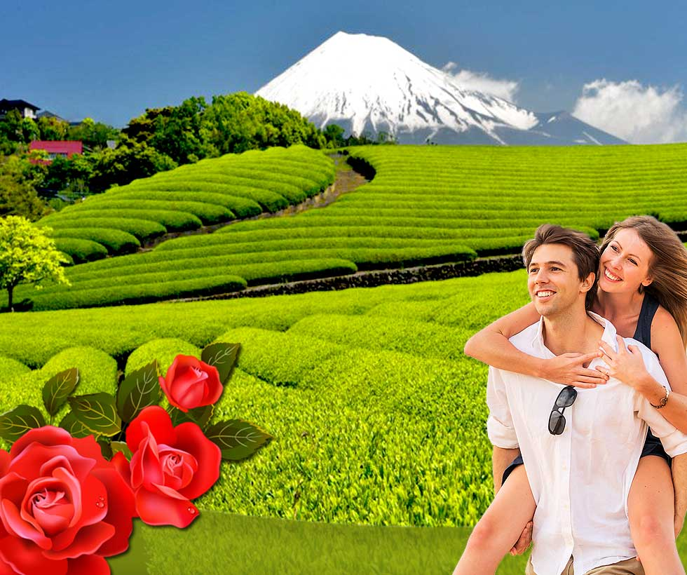 Munnar and Alleppey Honeymoon Package