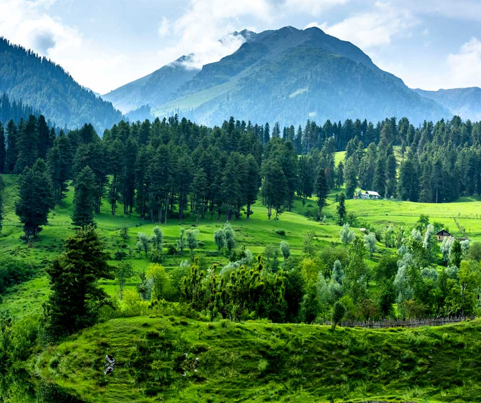 Classic Jammu and Kashmir Tour Package